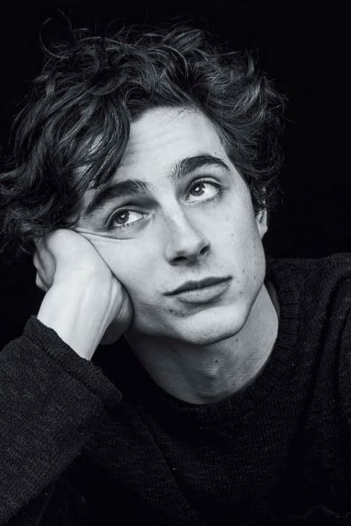 Key visual of Timothée Chalamet