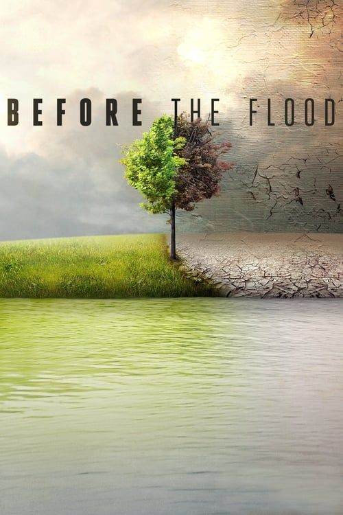 Key visual of Before the Flood