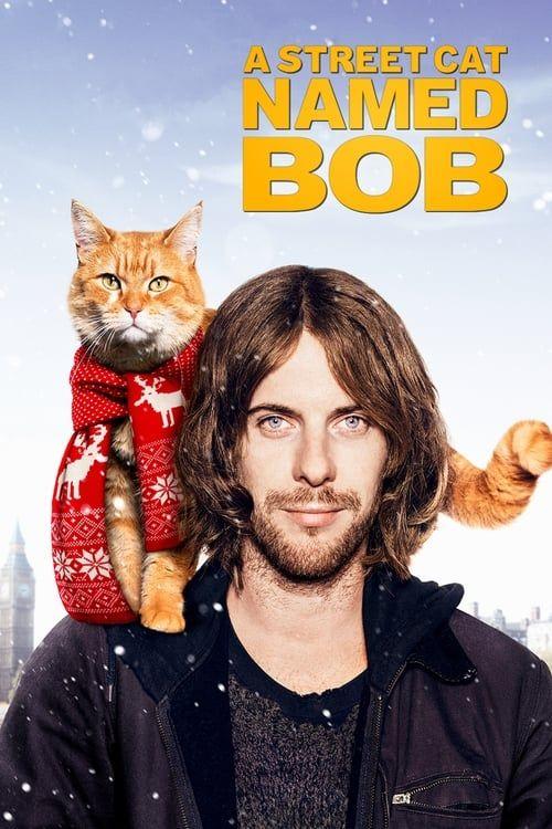 Key visual of A Street Cat Named Bob