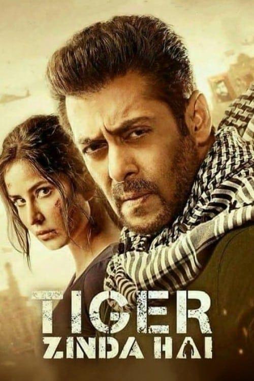 Key visual of Tiger Zinda Hai