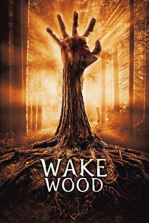 Key visual of Wake Wood