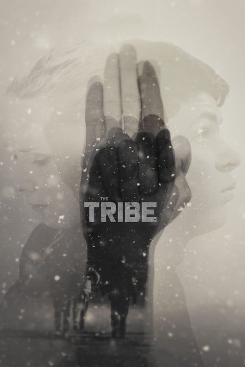 Key visual of The Tribe