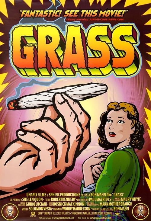 Key visual of Grass