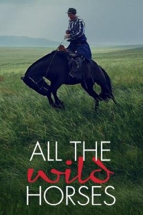 Key visual of All the Wild Horses