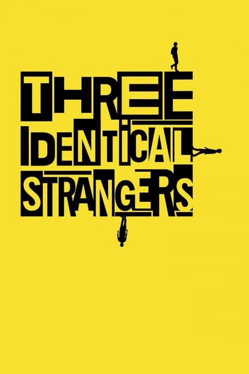 Key visual ofThree Identical Strangers