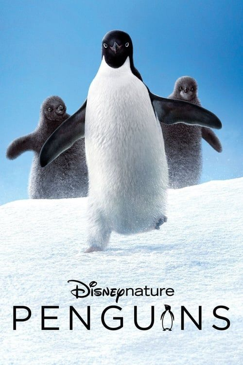 Key visual of Penguins