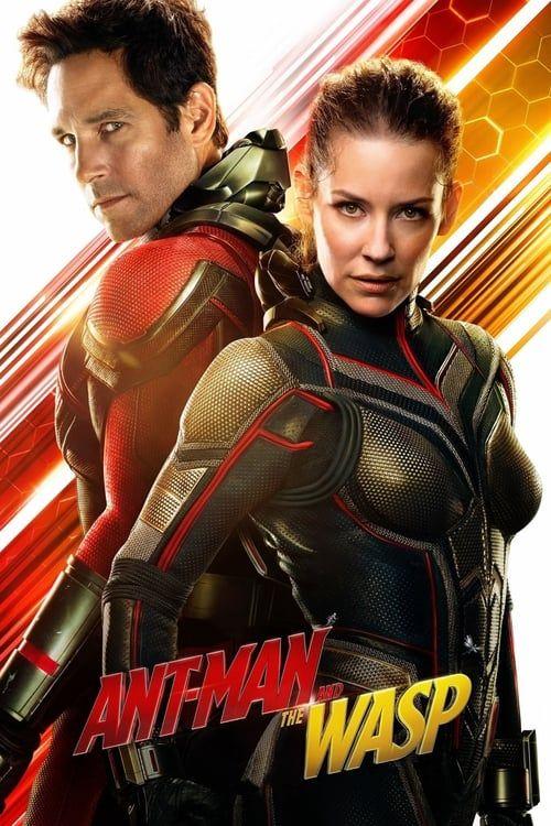 Key visual of Ant-Man and the Wasp