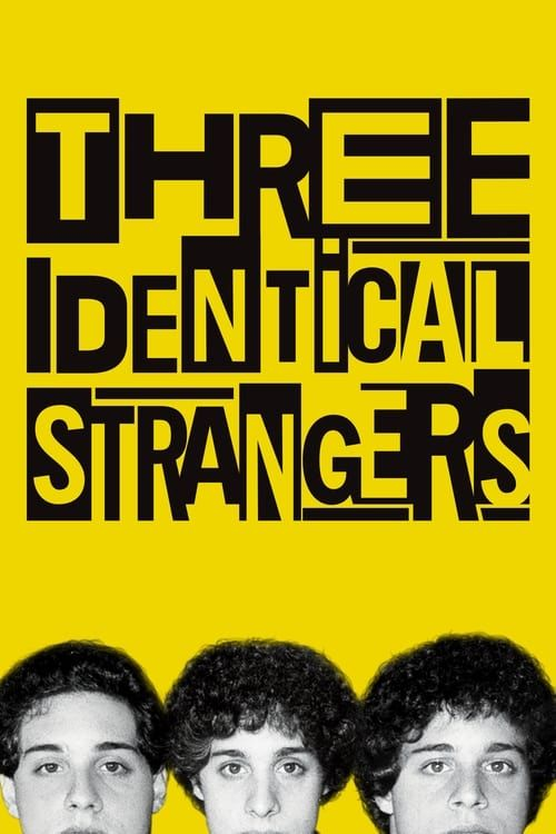Key visual of Three Identical Strangers