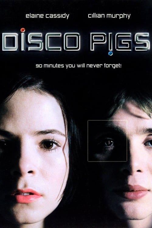 Key visual of Disco Pigs