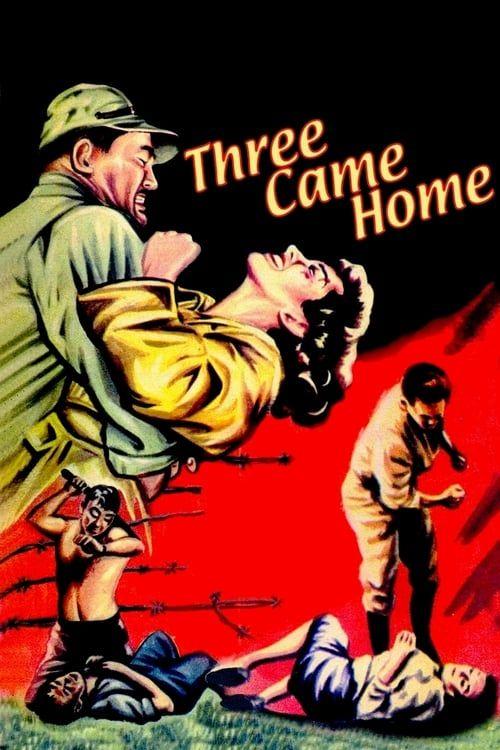Key visual of Three Came Home