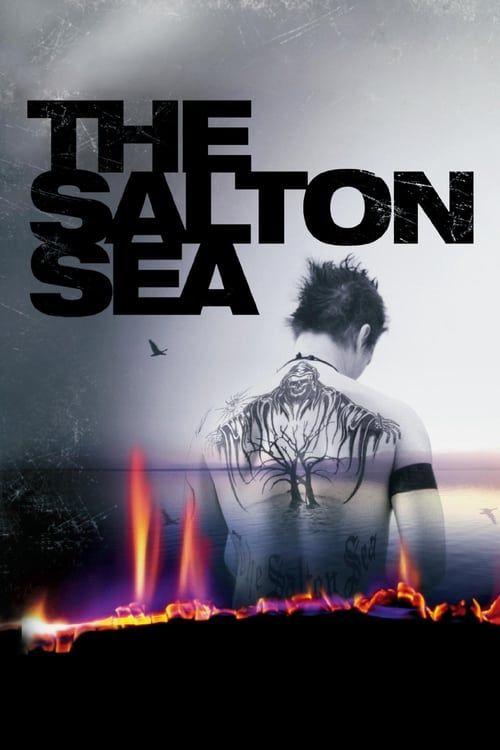 Key visual of The Salton Sea