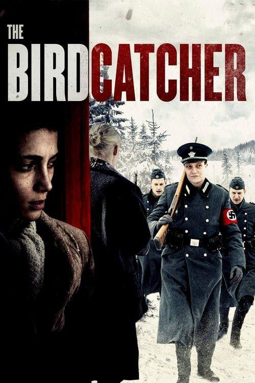 Key visual of The Birdcatcher