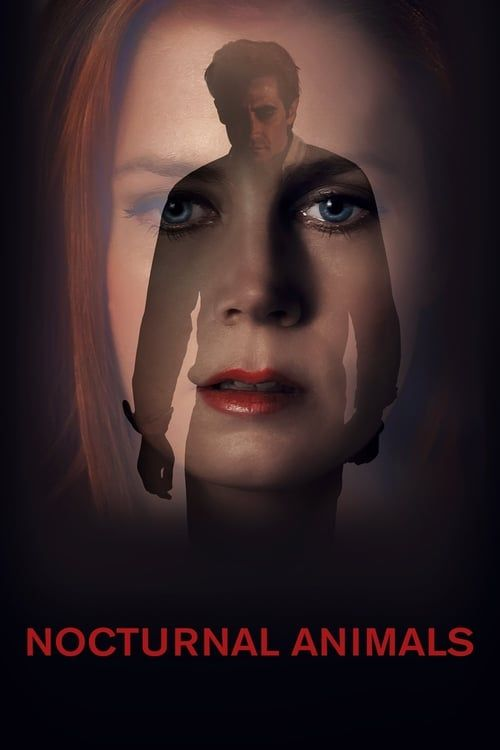 Key visual of Nocturnal Animals