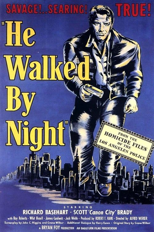 Key visual of He Walked by Night