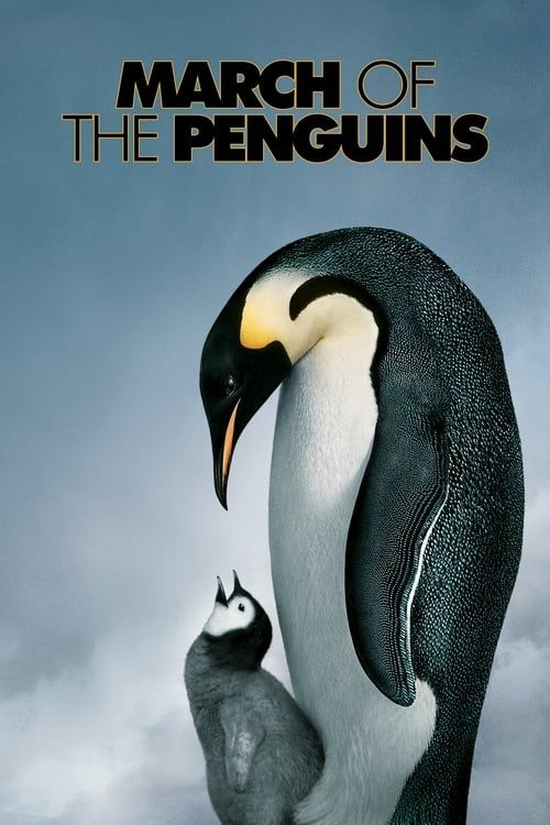Key visual of March of the Penguins