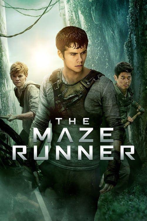 Key visual ofThe Maze Runner