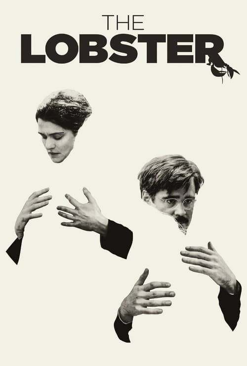 Key visual of The Lobster