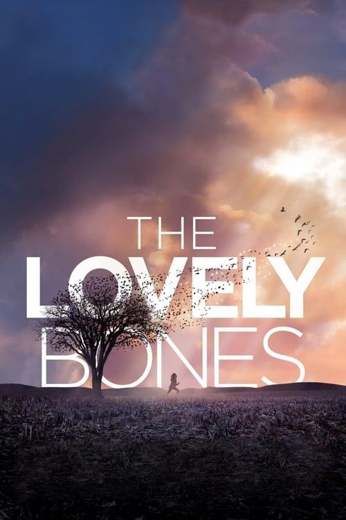 Key visual of The Lovely Bones