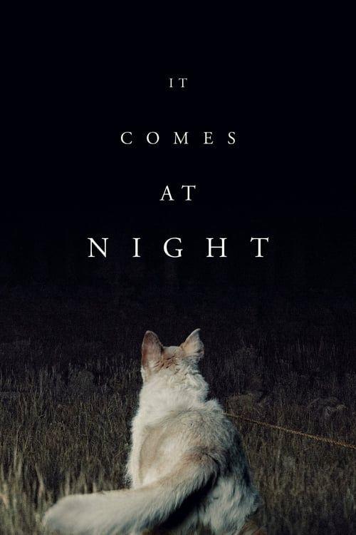 Key visual of It Comes at Night