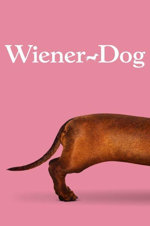 Key visual of Wiener-Dog