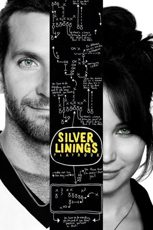 Key visual ofSilver Linings Playbook